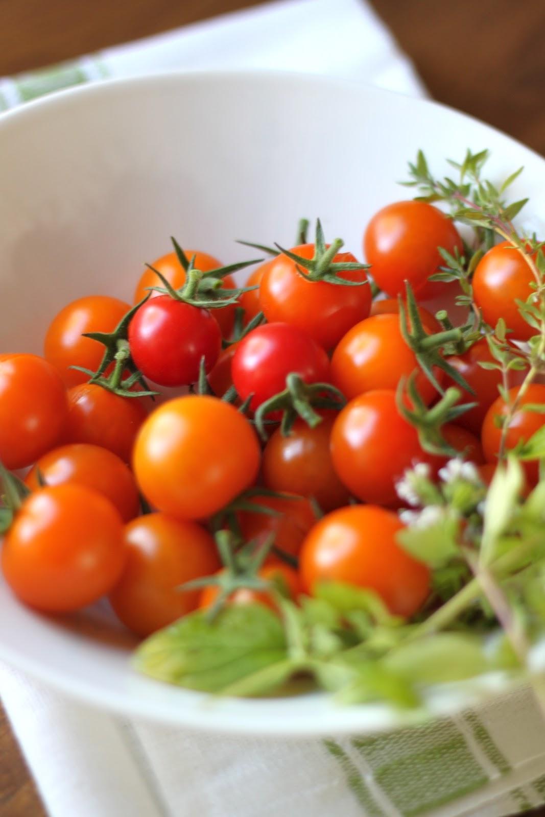 Täydellinen tomaattilajike