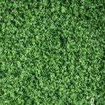 Kirkkaan vihreäksi lipstikalla värjäytynyttä karkeaa merisuolaa